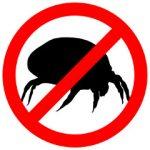Powiedz NIE alergii na roztocza