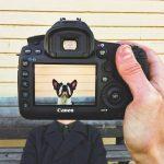 Jak się uczyć fotografii. Poznaj kilka prostych zasad!