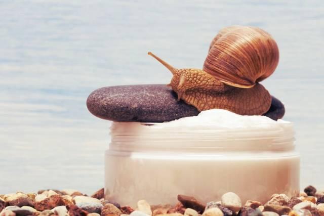krem ze śluzem ślimaka działanie